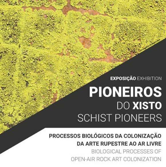 Pioneiros do Xisto – Processos biológicos na colonização da arte rupestre ao ar livre