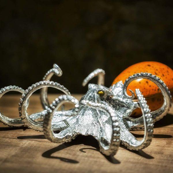Octopus Eurico Rebelo
